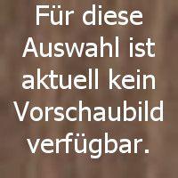 7295-31 | Altdeutsche Wetterstation